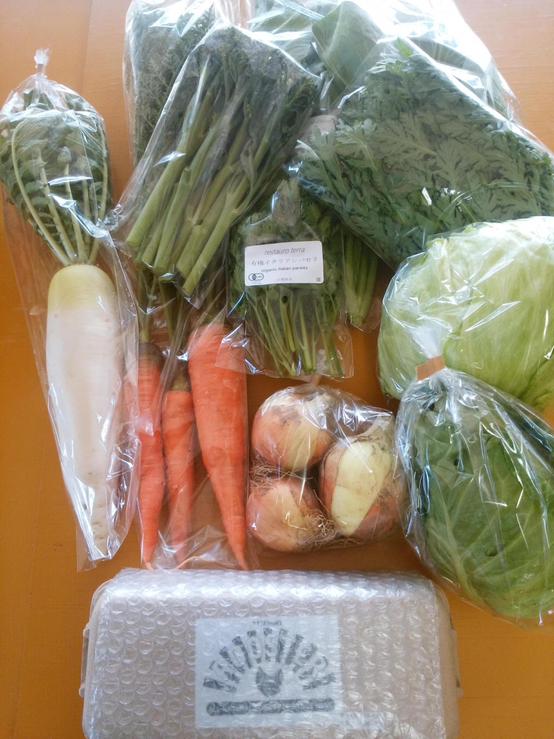 野菜・たまご Lセット