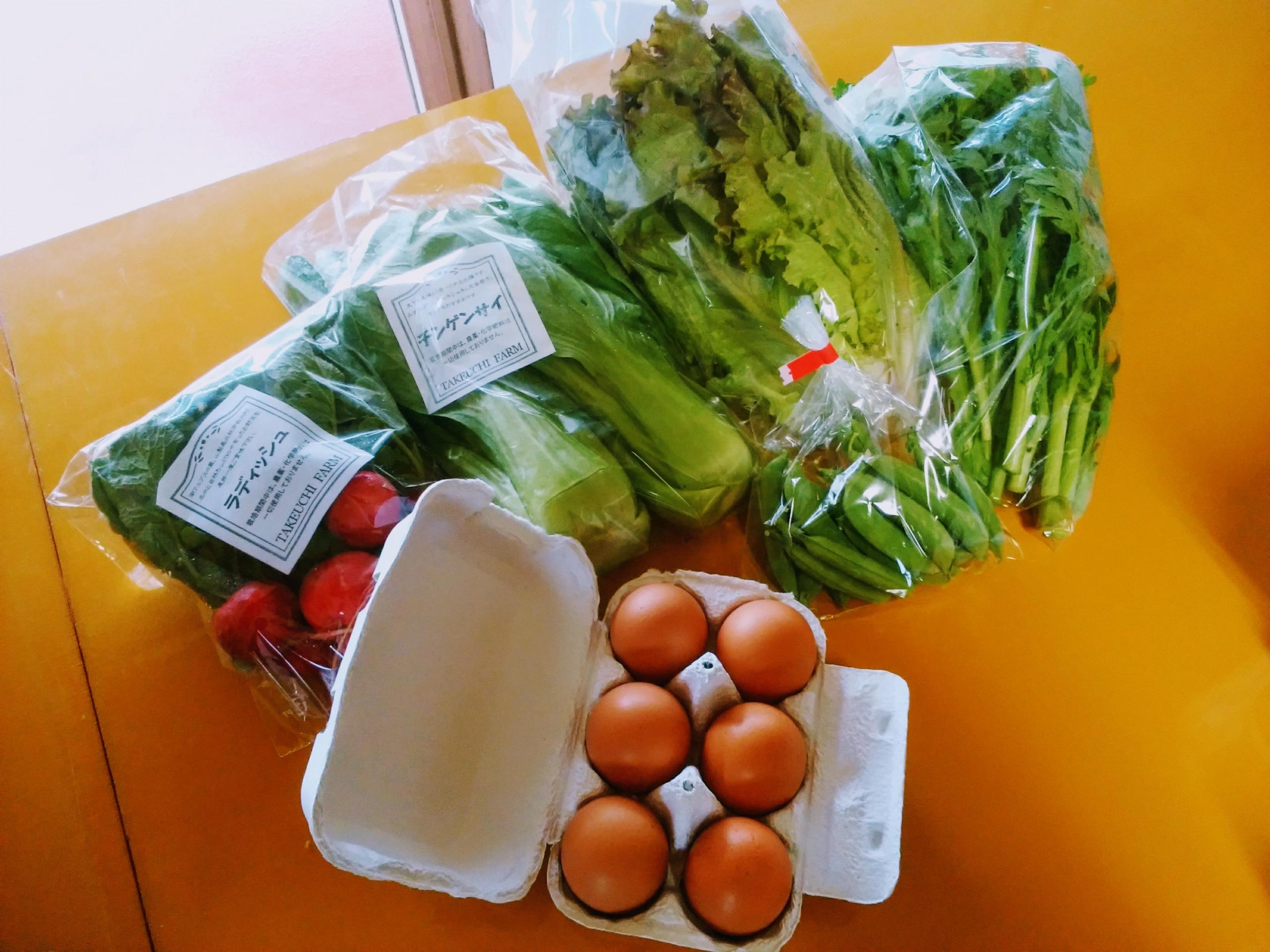 野菜たまごBOX「甲斐駒の恵み」Sセット(期間限定・送料無料:愛情♡やまなし農産物パック適用)